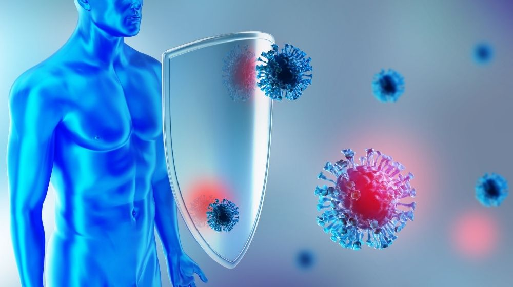 Immune defense fights with viruses - ss - featured photo | How To Boost Immune System During Flu Season